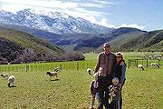 Oudemuragie Guest Farm