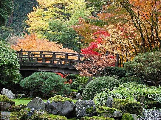 Jardines del mundo,, impresionantes Keukenhof_2