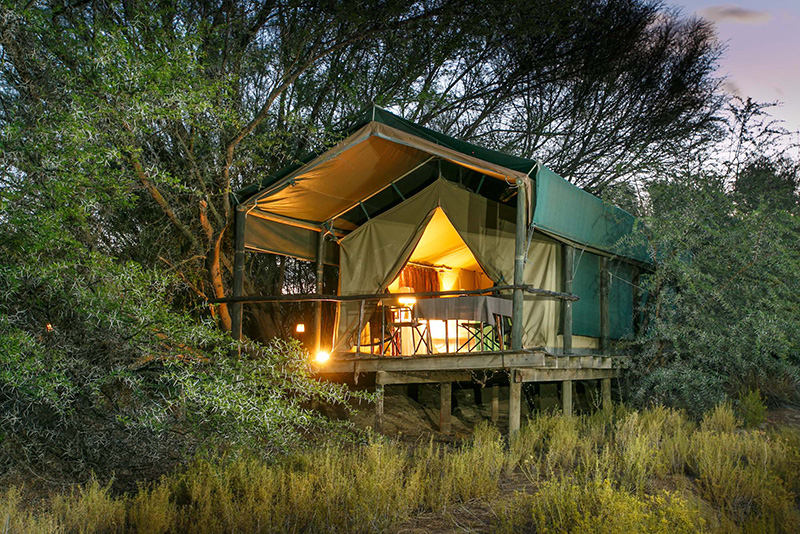 Luxury tented accommodation at an Oudtshoorn game lodge